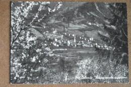 REVINE -  DOLOMITI   -  1958 - BELLA - Italia