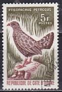 Costa D'Avorio, 1964/65 - 5f  Stone Partridge - Nr.233 Usato° - Costa D'Avorio (1960-...)