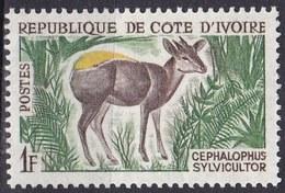 Costa D'Avorio, 1963/64 - 1f  Yellow-backed Duiker - Nr.201 MNH** - Wild