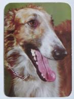 Dog  Chien  Hund  / Russian Chart - Chiens
