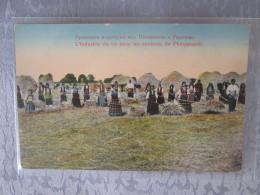 L INDUSTRIE DU RIZ DANS LES ENVIRONS DE PHILIPPOLI - Bulgarie