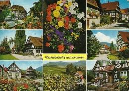 GERMANIA  BADEN-WUERTTEMBERG  SASBACHWALDEN  Im Badischen Schwarzwald - Sasbach