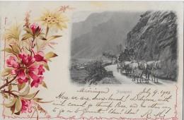 MEIRINGEN → Alpenpost Mit 5-Spänner Am Fusse Des Brünig 1903 - BE Berne