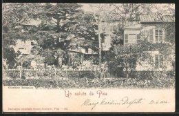 Cartolina Pisa, Giardino Botanico - Pisa