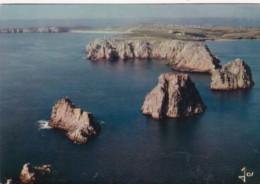 France Camaret-Sur-Mer Les Tas De Pois - Bretagne