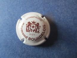 RAYMOND BOURDELOIS Blanc - Champagne