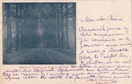 PRESLES : Drève Du Château - Aiseau-Presles