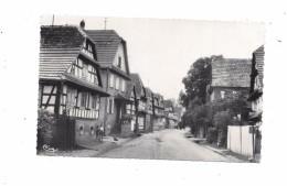 9934 - 67 - HUNSPACH : épicerie LEHMANN - Hunspach - Sonstige Gemeinden