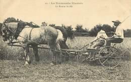 - Depts Div.-ref- GG363 - Calvados - Recolte Du Ble - Attelage Faucheuse - Attelages Faucheuses - Agriculture - - Otros Municipios