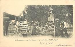 - Depts Div.-ref- GG351 - Bouches Du Rhone - En Provence - Coueillet Des Olives - Oulivado - Agriculture - Metiers - - France