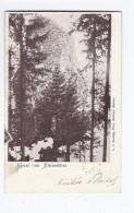 CPA AUTRICHE - GRUSS VOM STEINSCHLOSS - TB PLAN De Ruines D'un Château + TB Oblitération Verso 1904 - Autriche