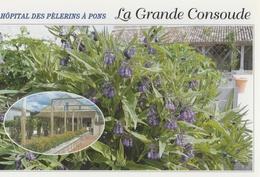 CPM Hôpital Des Pélerins à Pons, La Grande Consoude - Recette Des Crêpes à La Consoude - Pons