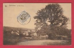 Daverdisse - Le Vieil Orme - 1933 ( Voir Verso ) - Daverdisse