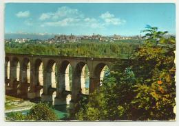 FOSSANO   VIAGGIATA FG - Cuneo