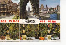 ALSACE FOLKLORE, Ses Villes, Ses Vins, Gewürtztraminer, Riesling, Pinot Noir,  Ed. Marasco 1970 Environ - Alsace