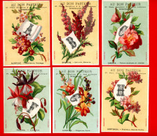 Bordeaux, Au Bon Pasteur, Lot De 17 Jolies Chromos, Lith. Bognard BOG-4-2-2, ALPHABET, Langage Des Fleurs - Other