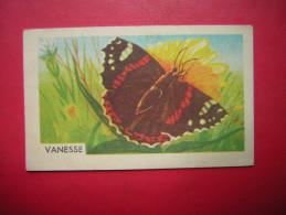 PETITE IMAGE ENTREMETS FRANCORUSSE  N° 124  DE L´ALBUM N° 1 PAPILLON VANESSE - Old Paper
