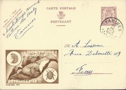 Publibel Obl. N° 812 ( Le DORYPHORE Menace Vos Récoltes  Détruisez-le !!!) Obl: Tamines 15/11/1948 - Interi Postali