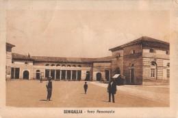 "05692 ""SENIGALLIA (AN) - FORO ANNONARIO"" ANIMATA. CART. POST. ORIG. SPEDITA 1913. - Senigallia"