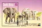 South Africa - 1999 IBRA Elephants MS (o) # SG 1119 - Elefantes