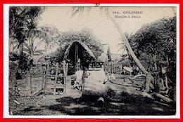ASIE - CEYLON  - SRI LANKA - Colombo --  Moulin à Huile - Yémen