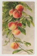 C.Klein. Fruits.GOM Edition Nr.1613 - Klein, Catharina