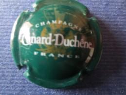 CANARD DUCHENE Vert. Petites Lettres - Canard Duchêne