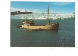 14798 -  Le Force Devant Le Glacier De L'Eqe Expéditions Polaires Françaises 40e Anniversaire 1988 (format 10X15) - Groenland