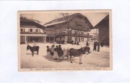 """832.  -  MEGEVE  (1113 M.)  -  Station  Hivernale  """" Les  Lutins """"  Pension  D'Enfants - Megève"""
