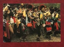 Swaziland - Princess At The Reed Dance - Swaziland