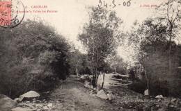 CPA CAROLLES - LE FOND DE LA VALLEE DES PEINTRES - France