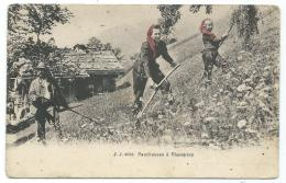 CPA ANIMEE CHAMPERY, ANIMATION, , FAUCHEUSES, FAUCHEUSE, VALAIS, SUISSE - VS Valais