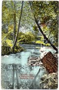 Bartlett' S Run At Terrapin Hollow- ZANESVILLE - OHIO - ( Amerique ) - Zanesville