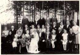 Photo Originale Mariage - Photo De Groupe à Un  Mariage De Jeune Couple En 1911 En Forêt - - Personnes Anonymes