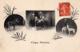 2788. CPA LE CIRQUE HELVETIA. CHEVAUX. SPECTACLE EQUESTRE. - Circus