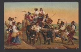 DF / FOLKLORE / COSTUMES, DANSE, MUSIQUE / LES MOISSONNEURS AUX MARAIS PONTINS ITALIE / CORNEMUSE ZAMPOGNA - Folclore