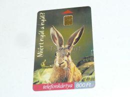 Bunny Haase Rabbit Kaninchen Easter Ostern Egg Ei Telefonkarte Phonecard Hungary - Tarjetas Telefónicas