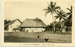 NOUVELLES HEBRIDES - VANUATU - Chez Un Coin D'Api - Vanuatu