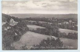 Reigate - View From Near Suspension Bridge - Pmk. Betchworth Duplex - Surrey
