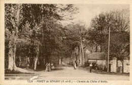 FORET DE SENART(ESSONNE) - France