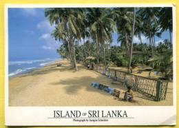 SRI LANKA .  Used  2  Stamps Birds - Sri Lanka (Ceylon)