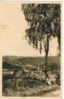 Vue Panoramique Prise Sur La Route De Banneux Notre Dame A Nessonvaux (pk30330) - Sprimont