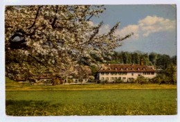 BIELERSEE HOTEL ST PETERSINSEL - BE Bern