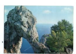 Q2050 CARTOLINA Di Capri In Prov. Di Napoli - Arco Naturale - VIAG. - Ed. Alterocca Terni F. 63310 - Autres Villes