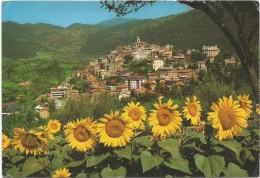 R546 Fiuggi (Frosinone) - Panorama Dal Colle Michelangelo - Fiori Flowers Fleurs / Non Viaggiata - Altre Città