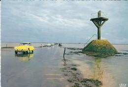 85----ILE DE NOIRMOUTIER---le Passage Du Gois--(citroën  D S )--voir 2 Scans - Ile De Noirmoutier