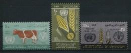 1963 Palestina, Lotta Contro La Fame Faim  , Serie Completa Nuova (**) - Palestina