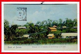 ASIE --  INDONESIE --  Groet Uit Bornéo - Indonésie