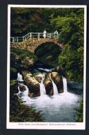 LUXEMBOURG  -  Echternach  Schiessentumpel  Unused Vintage Postcard - Echternach