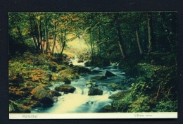 LUXEMBOURG  -  Mullerthal  L'Erenz Noire  Unused Vintage Postcard - Muellerthal